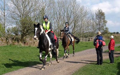How riding centres can benefit from staycations